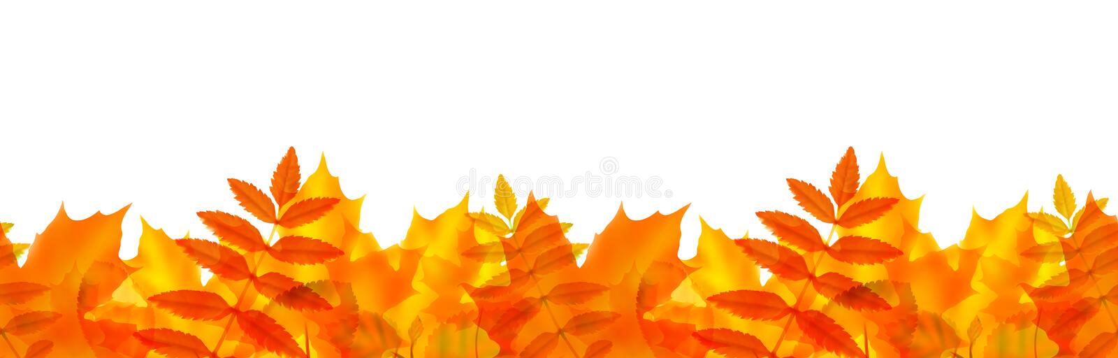 Seamless border with autumn leaves stock illustration