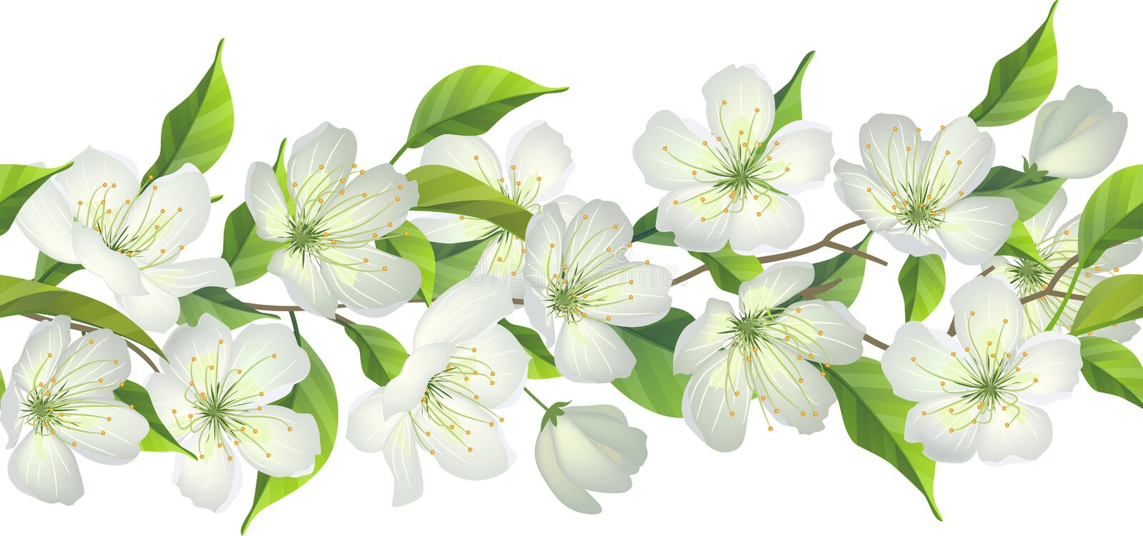 Seamless border with blossoming tree royalty free illustration