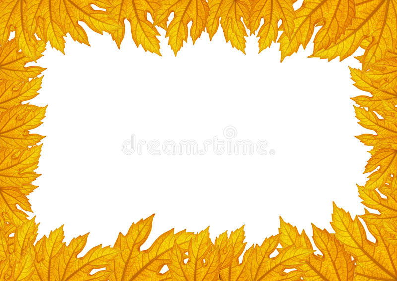 Seamless border pattern of leaves royalty free stock photography