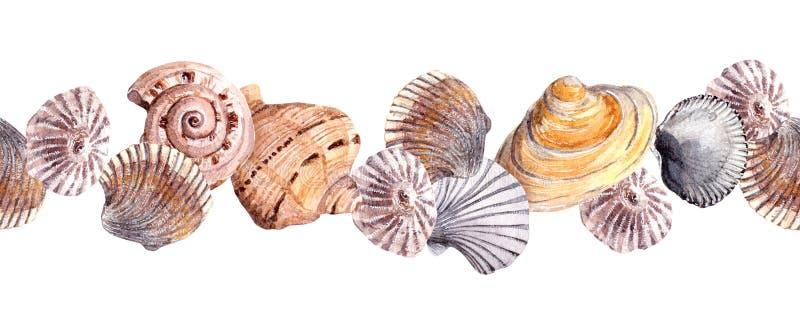 Seamless border strip with seashells. Watercolour banner vector illustration
