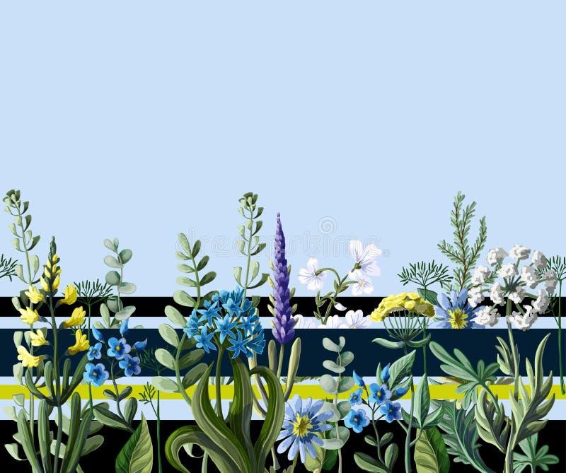 Seamless border of wild flowers. Vector illustration. Seamless border of wild flowers. Vector vector illustration