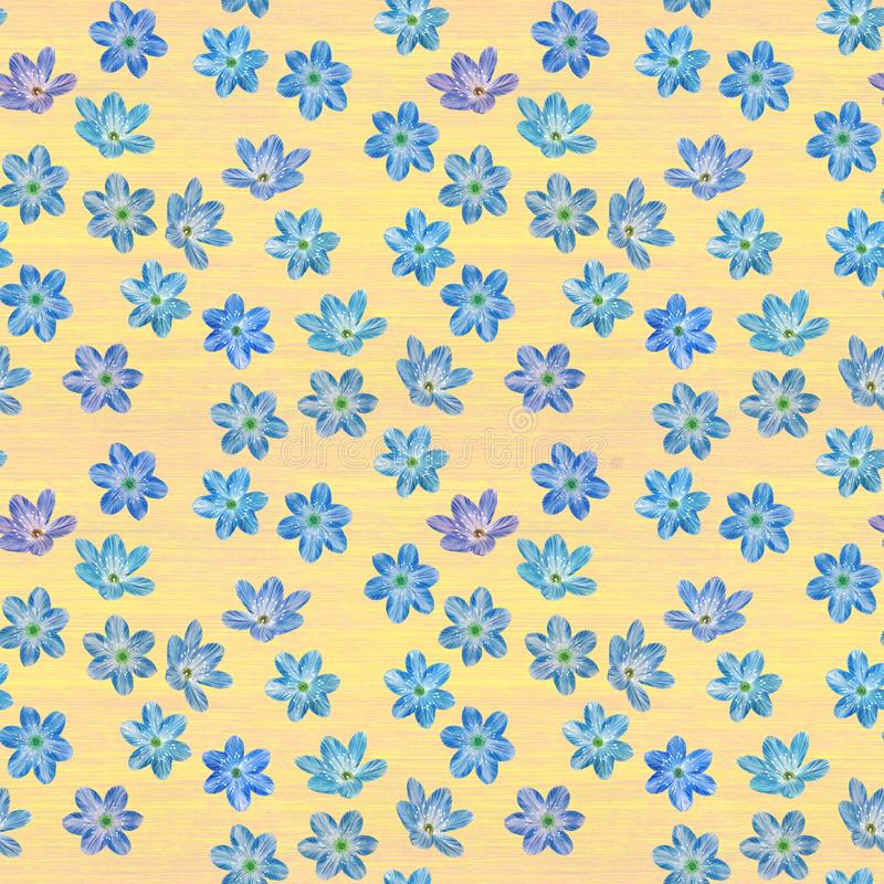 Seamless botanical pattern of blue flowers. royalty free stock image