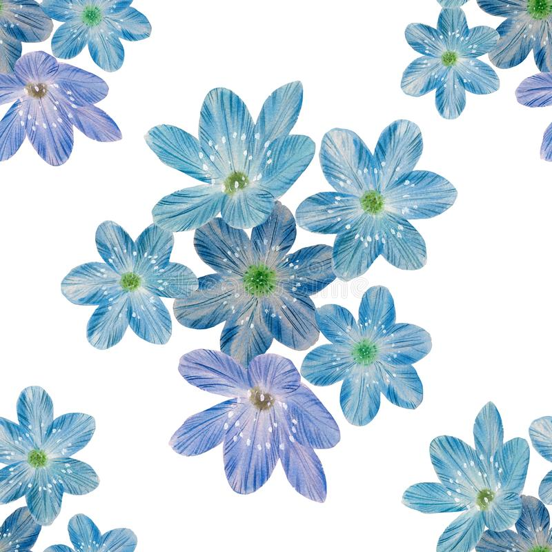 Seamless botanical pattern of blue flowers. stock image