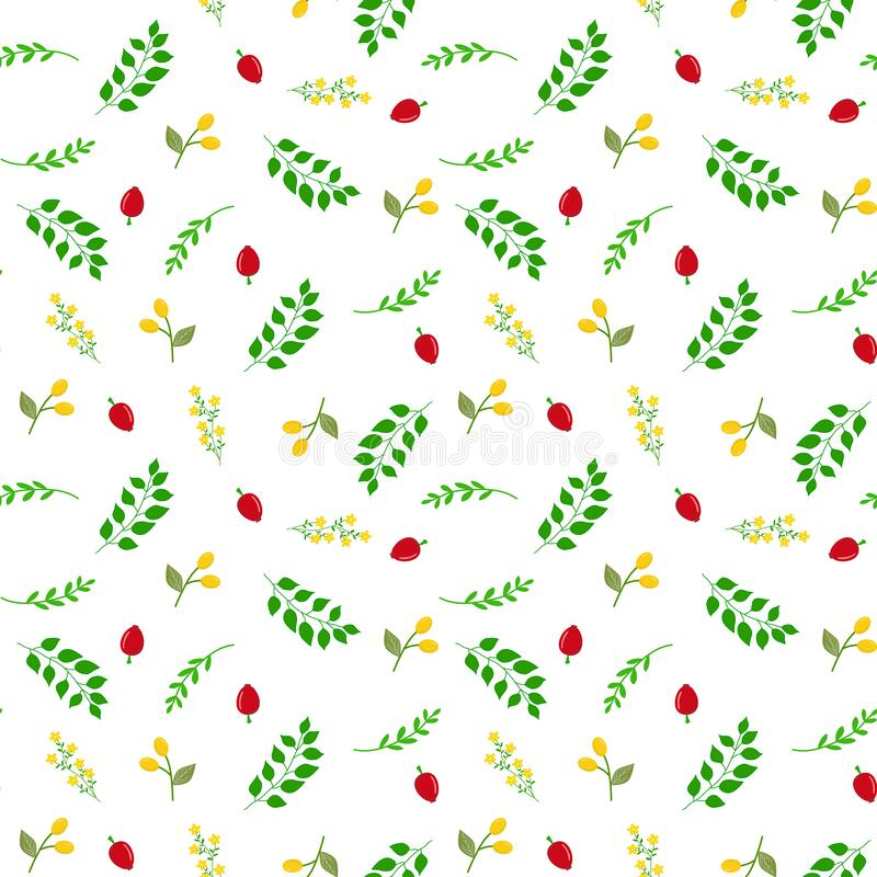 Free Seamless Botanical Vector Pattern With Hand Drawn Doodle Berries Red Rose Hips Yellow Buckthorn Green Twigs With Leaves Flowers Royalty Free Stock Photos - 179135328
