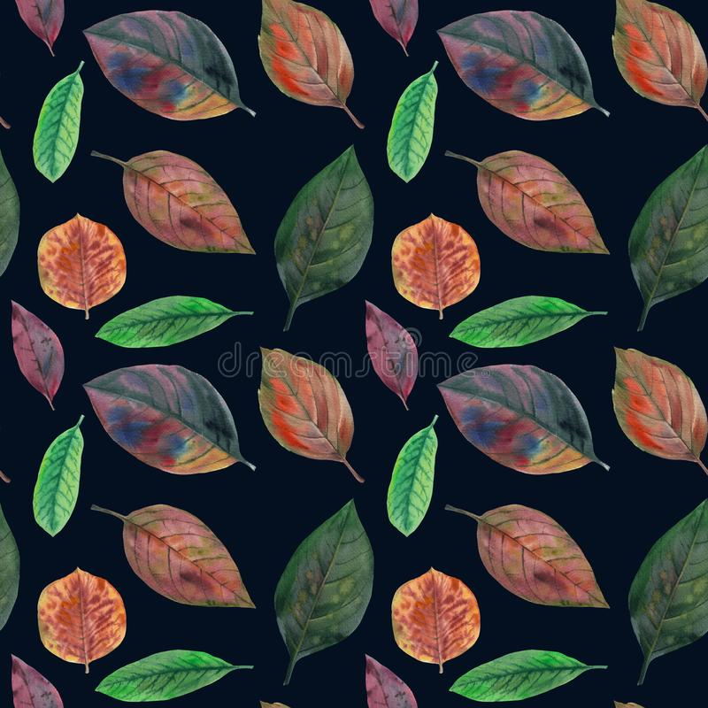 Set of watercolor leaves. seamless pattern vector illustration