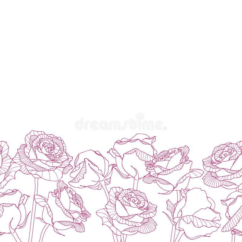 Seamless bottom border made of rose flowers. Seamless bottom border made of engraving rose flowers vector illustration