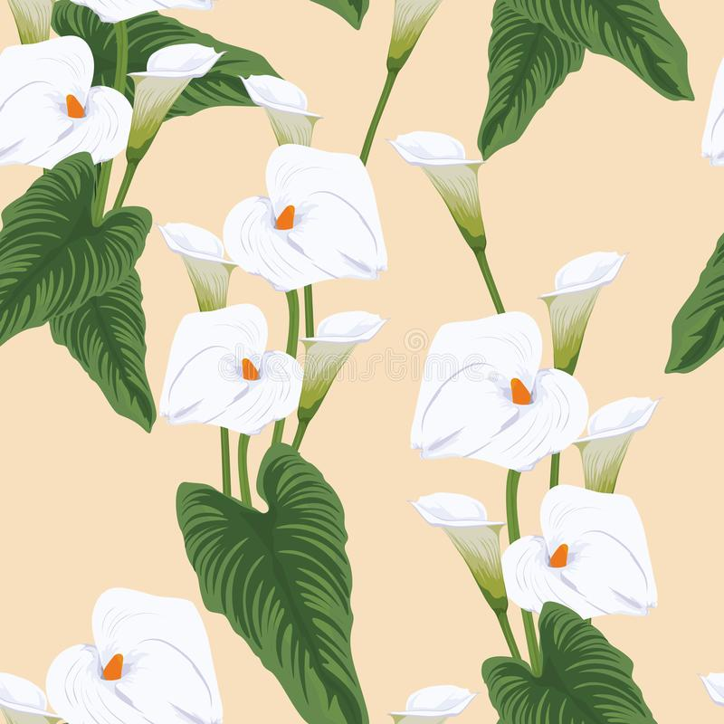 Seamless calla lilies flower background, elegant fashion colorful pattern with flowers. Seamless calla lilies flower background, elegant fashion colorful royalty free illustration