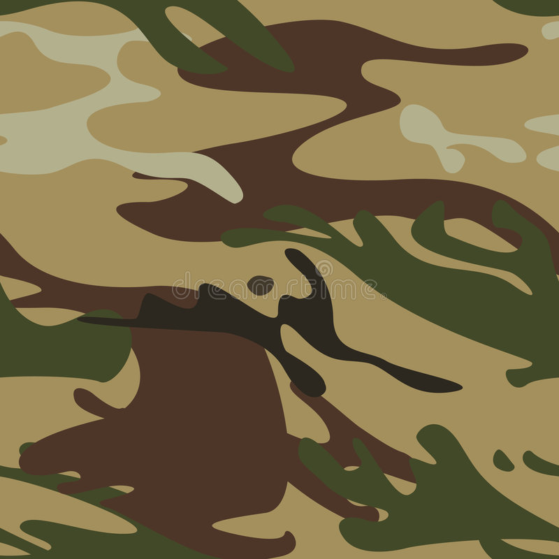 Free Seamless Camouflage Pattern Royalty Free Stock Image - 5961346
