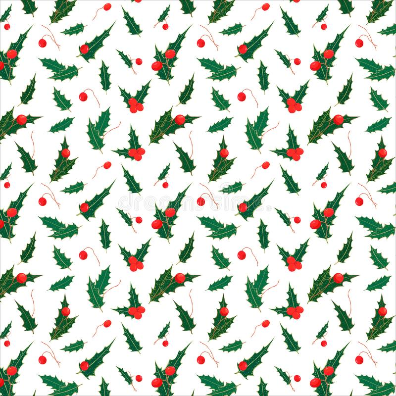 Seamless Christmas pattern of holly leaves and berries. New Year`s floral pattern of green leaves and red berries on white vector illustration
