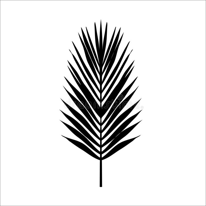 Download seamless color palm leave flat style black and white stock illustration