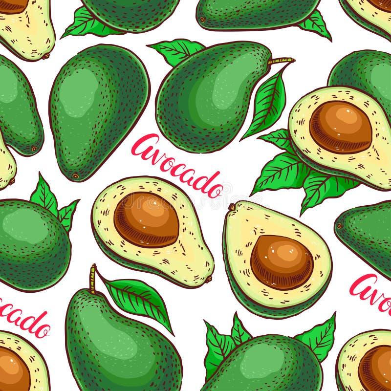 Seamless colorful avocado vector illustration