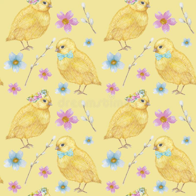 Seamless Easter pattern Watercolor hand drawn of yellow chiken, Spring flowers, willow, bow. Colorful bird, chikens baby. Easter Seamless pattern Watercolor hand royalty free illustration