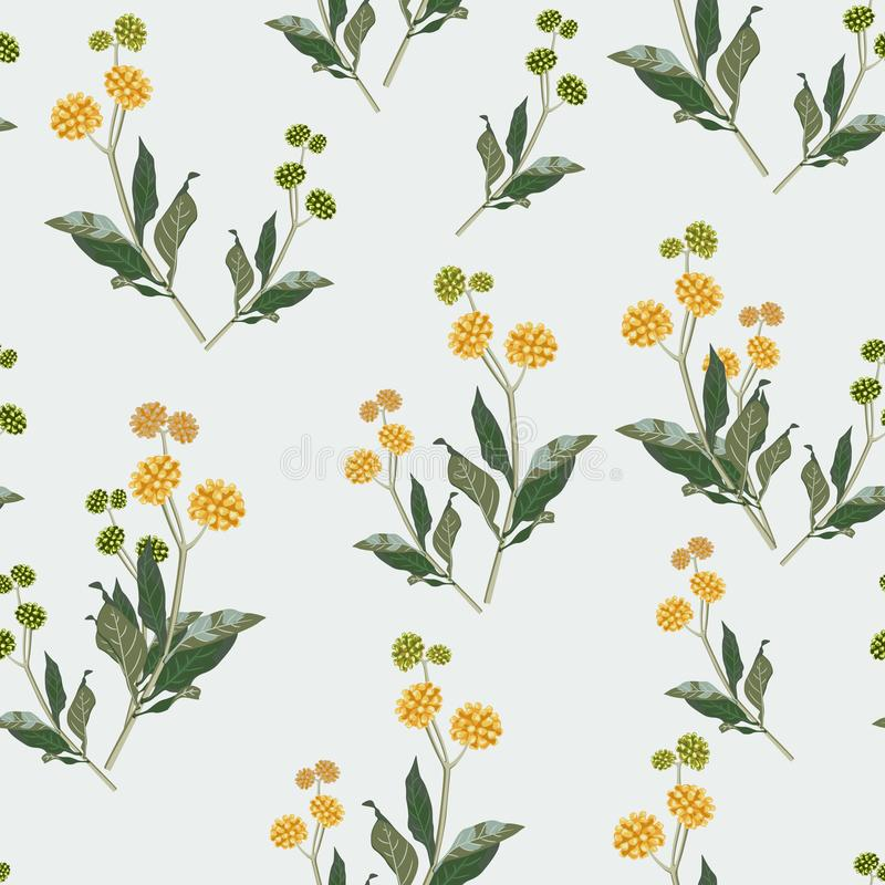 Free Seamless Elegant Floral Pattern Of Yellow Wildflowers. Botanical Motifs Are Scattered Randomly. Stock Photo - 129617460