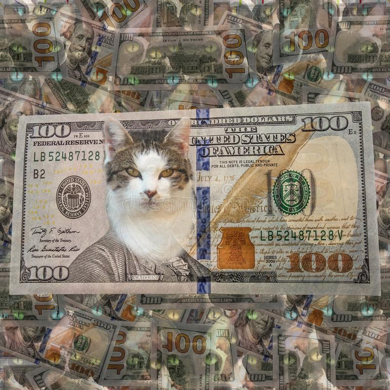 Seamless financial funny pattern for cat lovers. Seamless funny financial background for cat lovers from american hundred dollar banknotes and a lot of cats. New stock photo