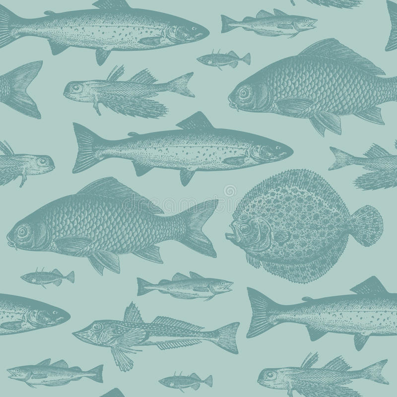 Seamless fish pattern royalty free illustration