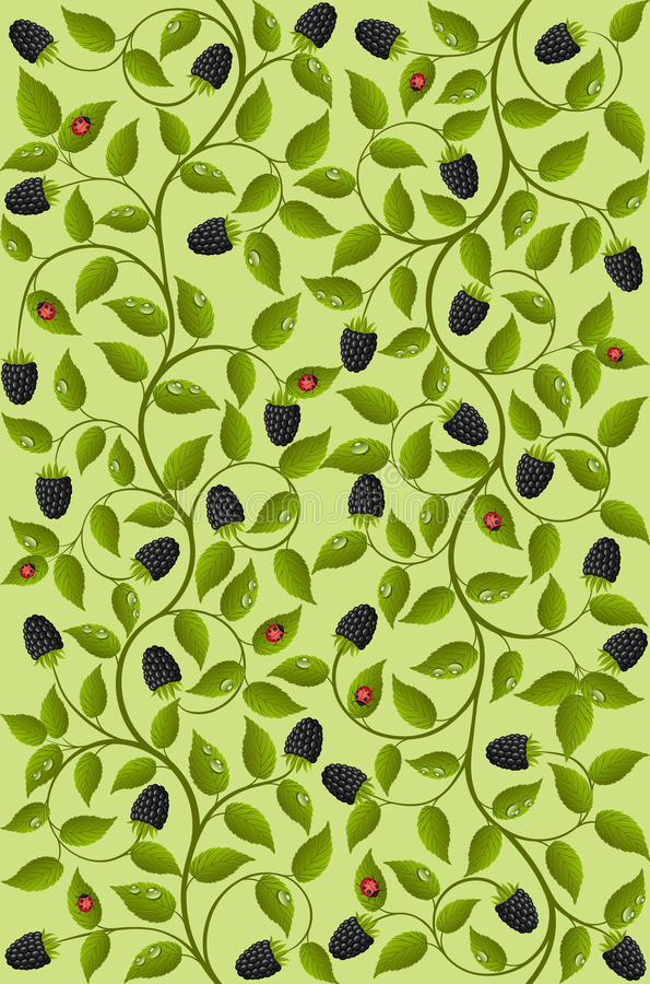 Download Seamless Floral Background With A Blackberry Royalty Free Stock Image - Image: 22833256
