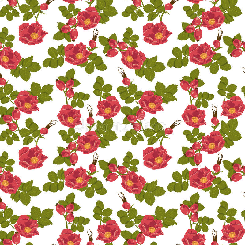 Download Seamless Floral Background With Wild Rose Stock Vector - Image: 34535193