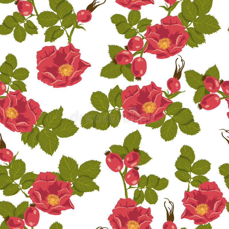 Download Seamless Floral Background With Wild Rose Stock Vector - Illustration: 34597449