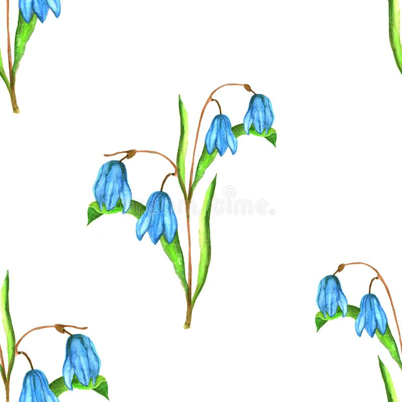 Seamless floral botanical pattern. Watercolor illustration of blue scilla flowers stock illustration