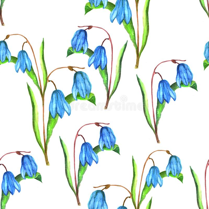 Seamless floral botanical pattern. Watercolor illustration of blue scilla flowers royalty free illustration