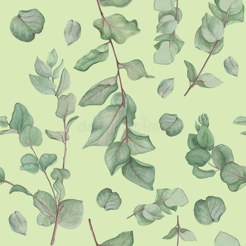 Floral pattern with branches of eucalyptus, watercolor painting on white background. Seamless floral pattern with branches of eucalyptus, nwatercolor painting on stock illustration