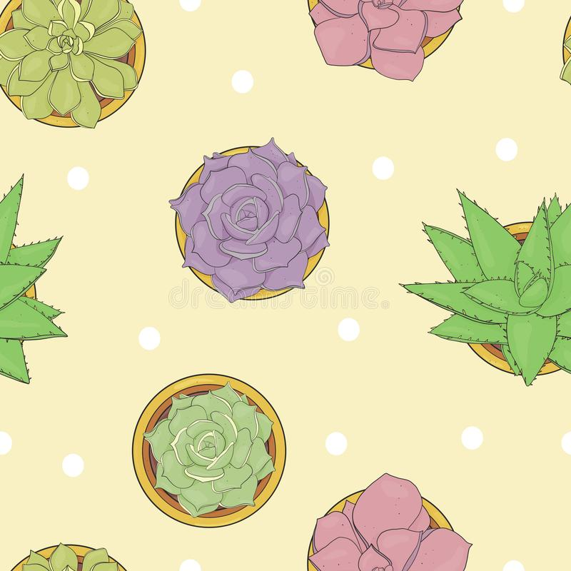 Seamless floral pattern with different succulents in pots. Colorful vector illustration in sketch style. royalty free illustration