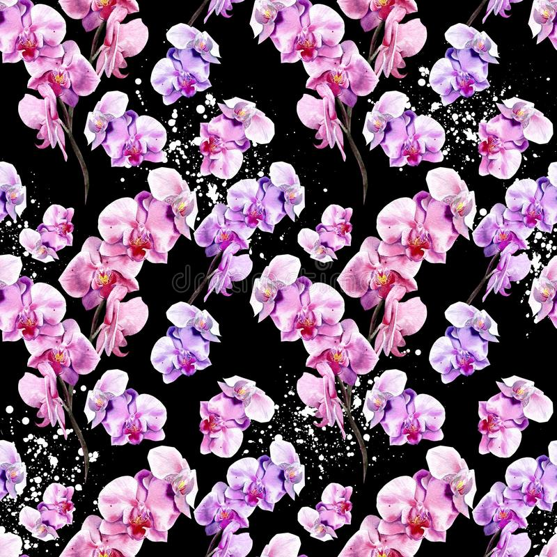 Seamless floral pattern with hand drawn orchids on black background royalty free illustration