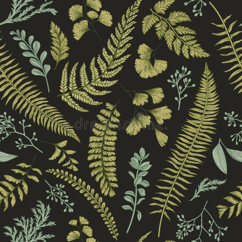 Seamless floral pattern with herbs and leaves. stock illustration