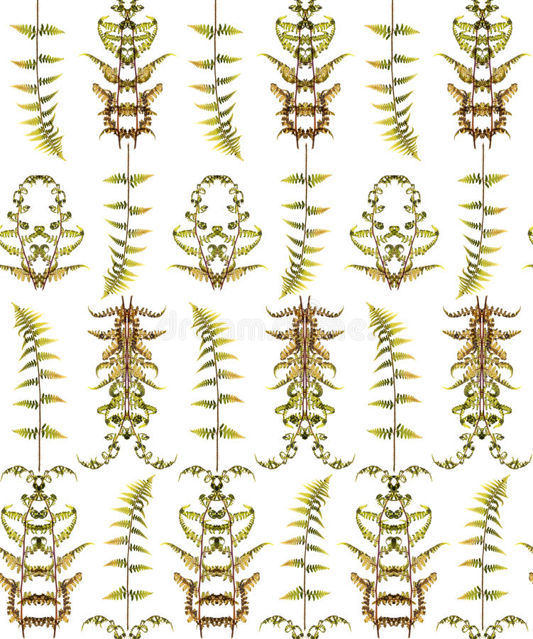 Seamless floral pattern with herbs vector illustration