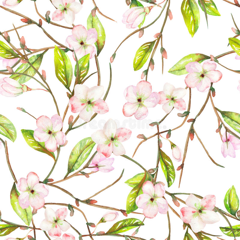 A seamless floral pattern with an ornament of an apple tree branch with the tender pink blooming flowers and green leaves, painted vector illustration