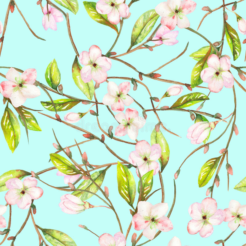 A seamless floral pattern with an ornament of an apple tree branch with the tender pink blooming flowers and green leaves, painted stock illustration
