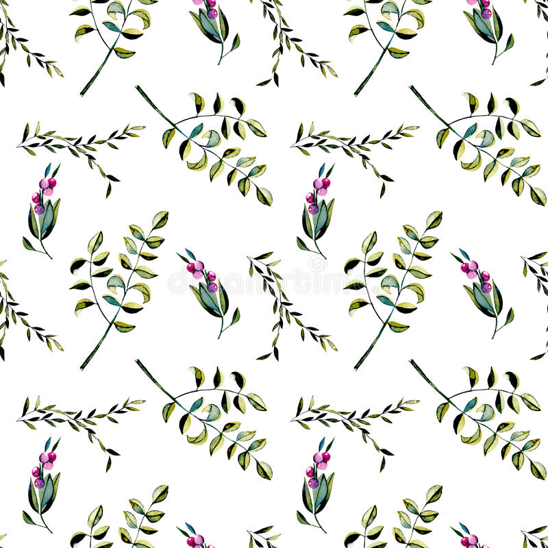 Seamless floral pattern with purple berries and acacia tree branches royalty free illustration