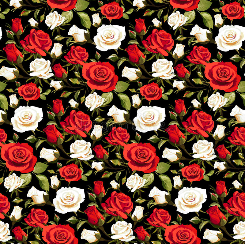 Seamless Floral Pattern with Red and White Roses on a Black Background stock illustration