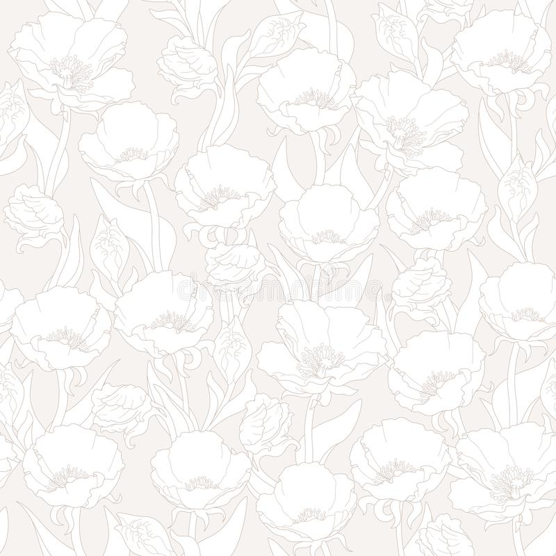 Vector seamless floral pattern with poppies in white and cream colours royalty free stock image