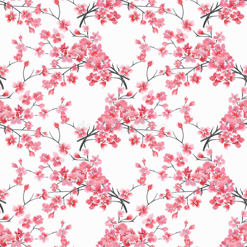 Seamless floral pattern. watercolor branches of cherry blossoms on a white background. royalty free illustration