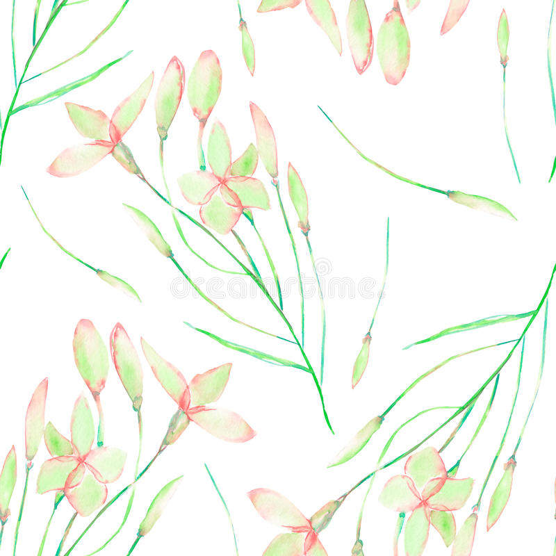 A seamless floral pattern with watercolor hand-drawn tender pink spring flowers royalty free illustration