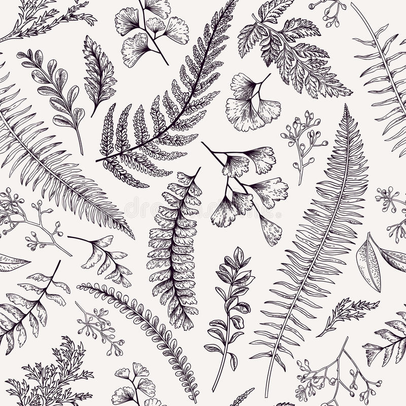 Free Seamless Floral Pattern With Herbs And Leaves. Royalty Free Stock Photos - 78379248