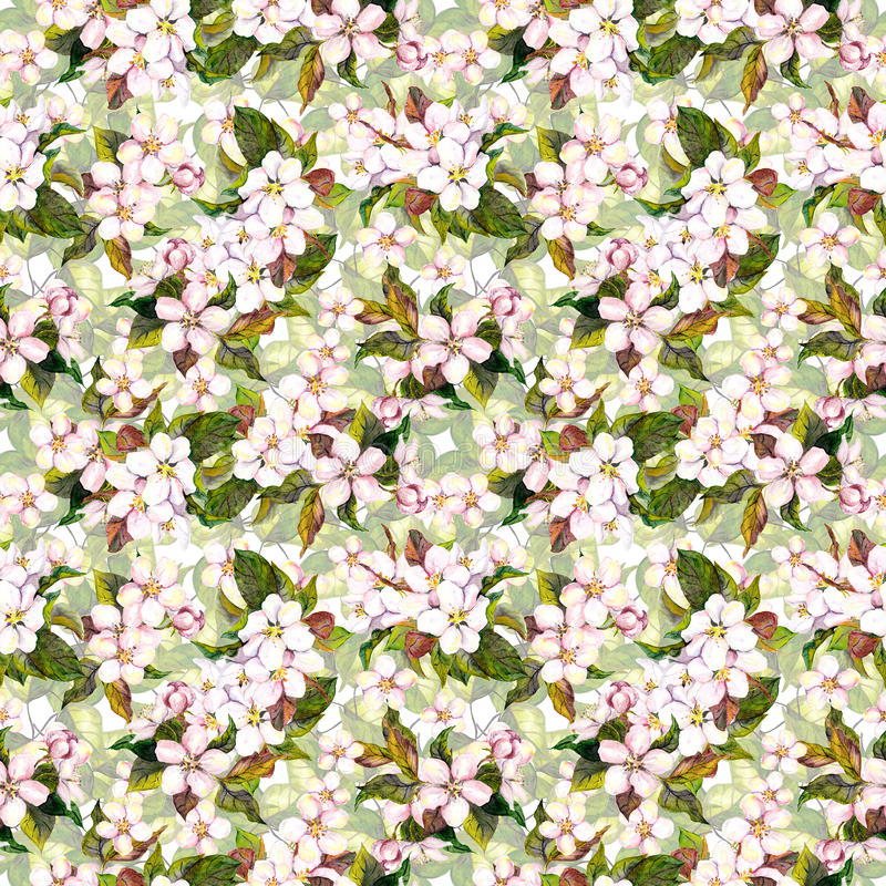 Seamless floral swatch with blooming apple flower, cherry blossom. Aquarell drawing. Seamless floral template with aquarelle painted apple and cherry flower vector illustration
