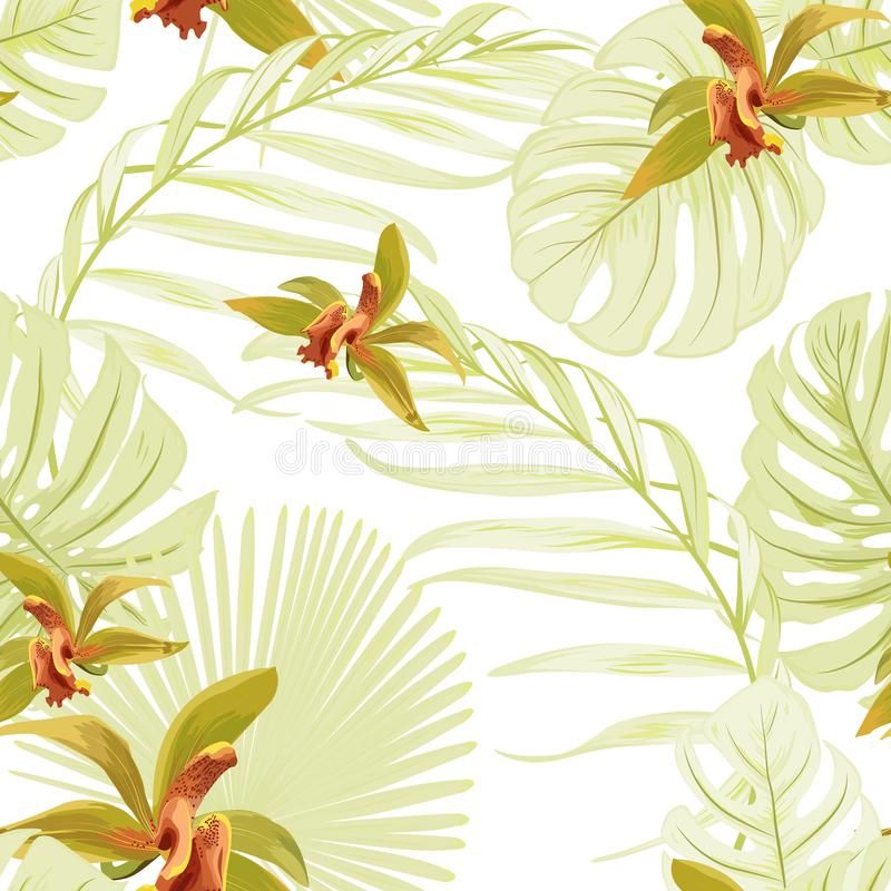 Seamless floral tropical pattern. Cattleya orchid phalaenopsis flowers. Exotic light green leaves jungle palm monstera. stock illustration