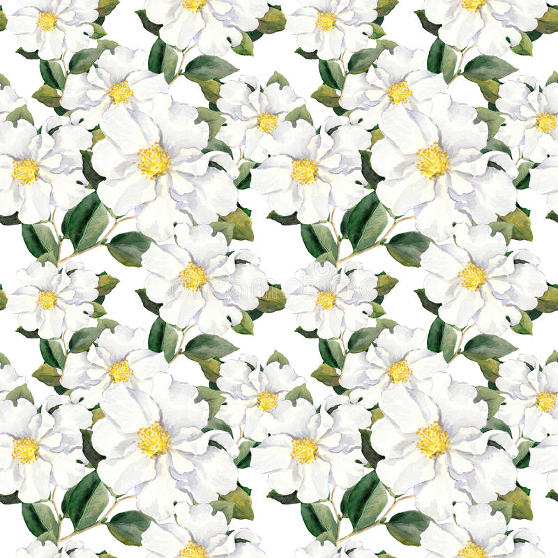 Seamless floral wallpaper with white flowers magnolia, peonies. Watercolour. Foral pattern with white flowers magnolia. Watercolor stock illustration