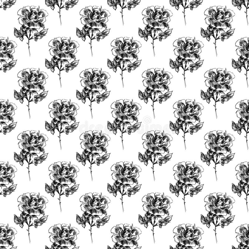 Seamless freehand pattern of abstract rose flowers isolated on white background. Vector floral illustration. Cute doodle modern. Isolated elements. Outline vector illustration