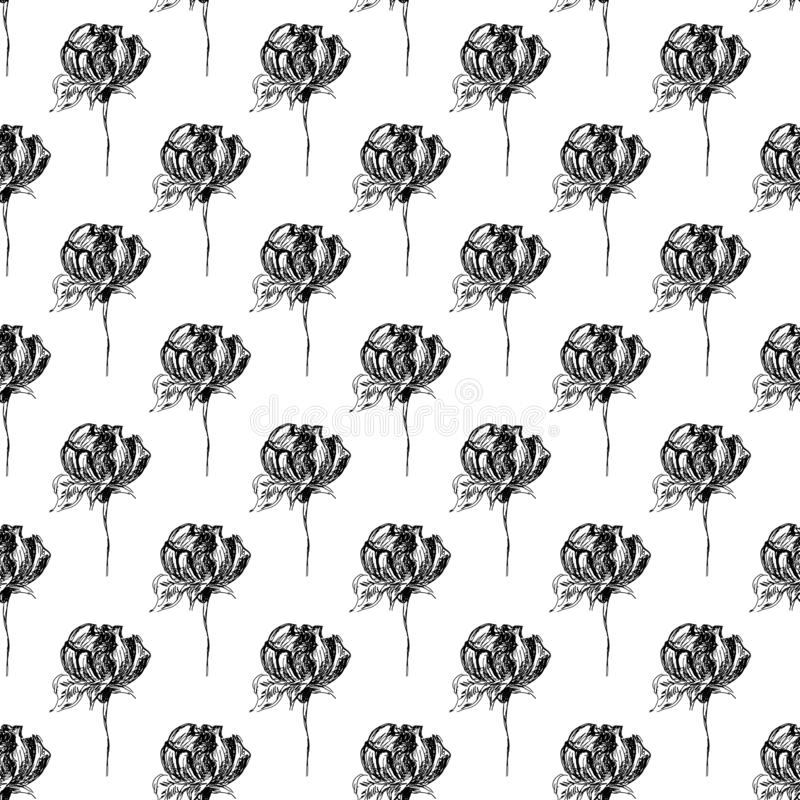 Seamless freehand pattern of abstract rose flowers isolated on white background. Vector floral illustration. Cute doodle modern. Seamless hand drawn pattern of royalty free illustration