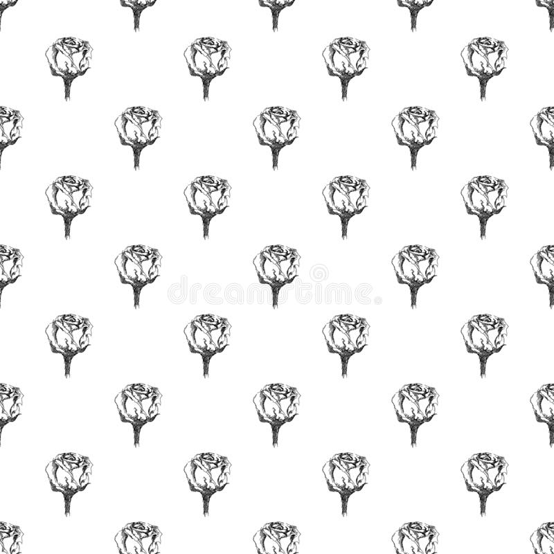 Seamless freehand pattern of abstract rose flowers isolated on white background. Vector floral illustration. Cute doodle modern. Seamless hand drawn pattern of vector illustration
