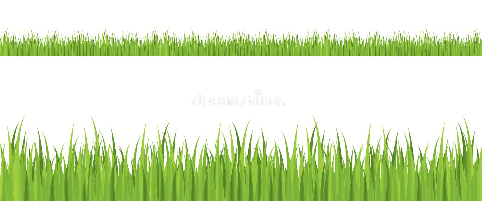 Download Seamless Grass Illustration Royalty Free Stock Images - Image: 8025929