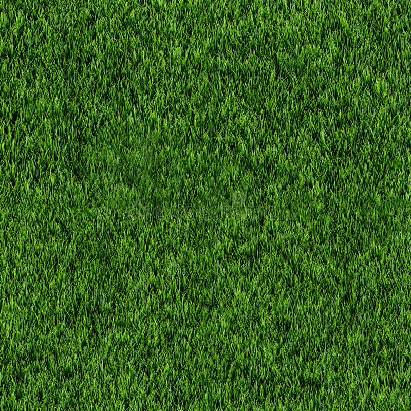 Free Seamless Grass Texture Stock Photography - 38820132