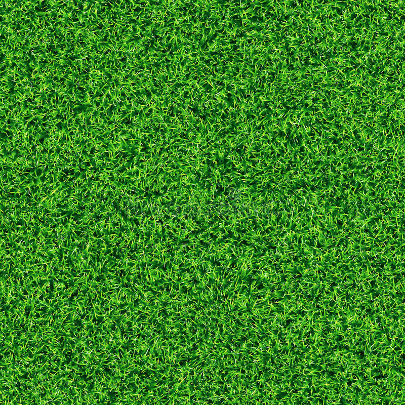 Seamless grass texture. An idyllic seamless grass texture royalty free stock image