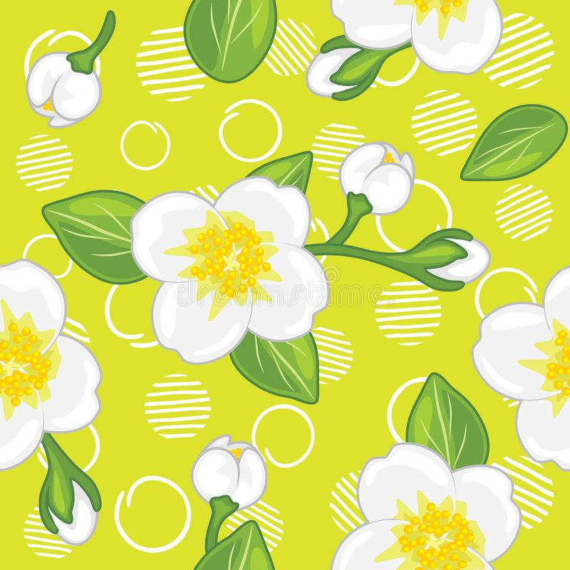 Seamless green pattern with blooming jasmine stock image