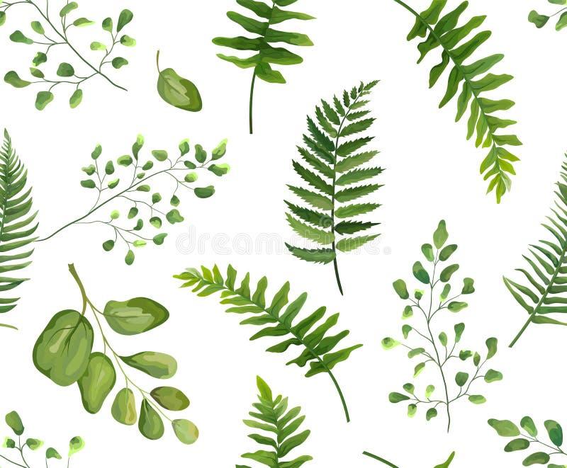 Seamless greenery green leaves botanical, rustic pattern Vector stock illustration