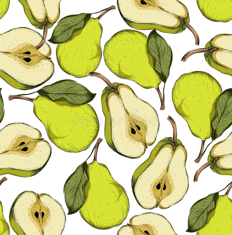 Seamless hand drawn pear background. Sketch style set of fruit. Vintage Eco food. Vector illustration. stock illustration