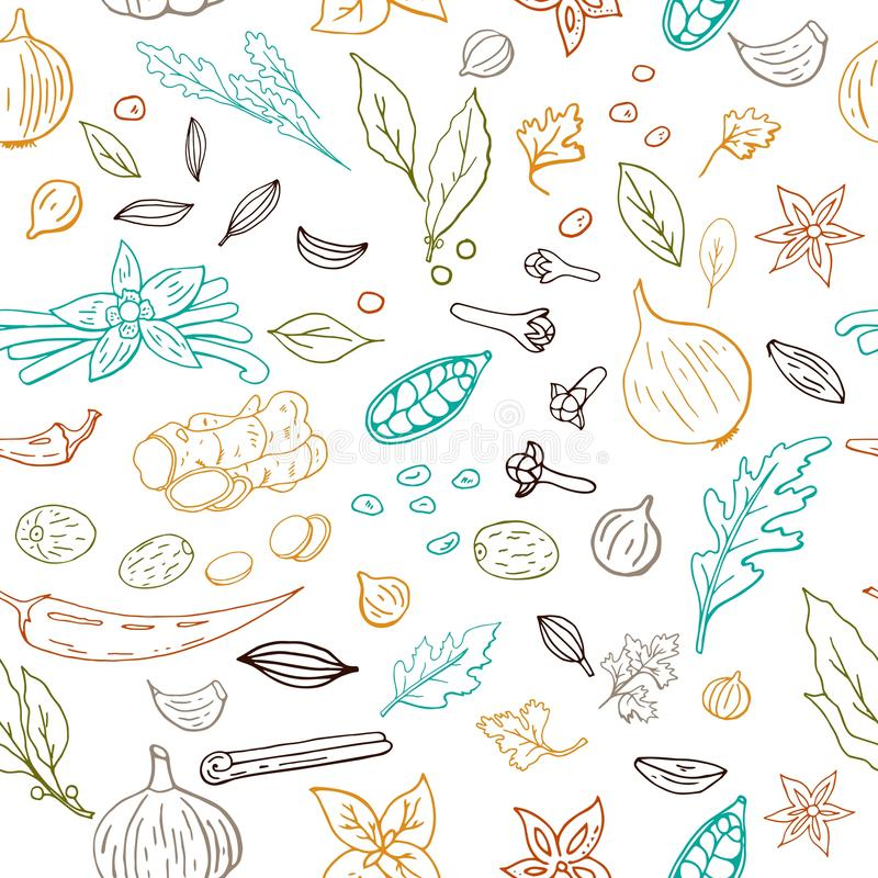 Seamless hand drawn vector pattern with different outline spices isolated on white background royalty free illustration